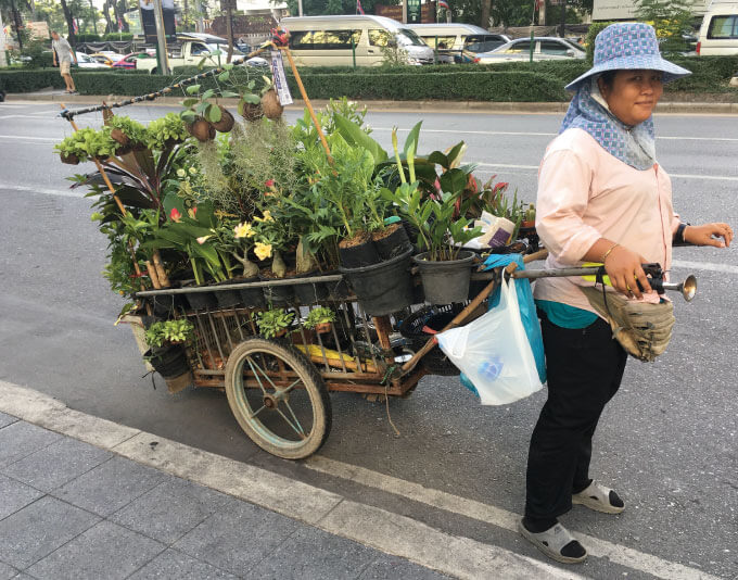 植木を載せたリヤカーを引く女性
